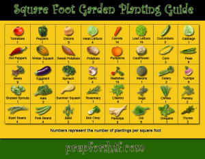 Square_Foot_Planting_Guide_LG
